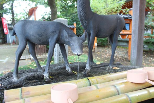 神鹿の社 相州春日神社で鹿せんべいをあげてきた!
