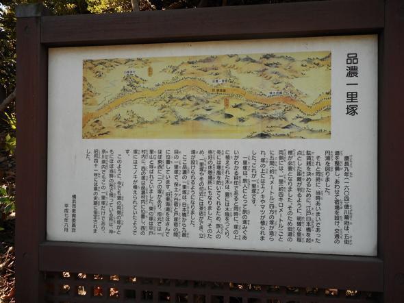 DSCN9695_to